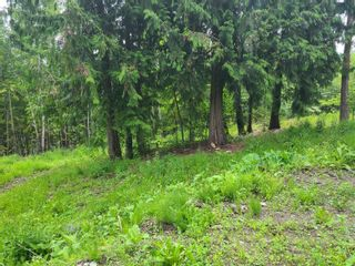 Photo 26: 1395 Taylor Road, in Sorrento: Vacant Land for sale : MLS®# 10229703
