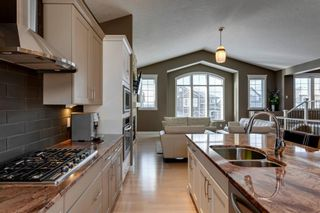 Photo 10: 219 Springbluff Heights SW in Calgary: Springbank Hill Detached for sale : MLS®# A1047010