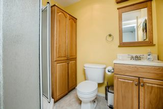 Photo 29: 24274 102A Avenue in Maple Ridge: Albion House for sale : MLS®# R2469758