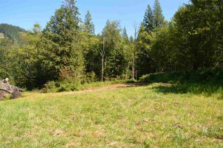 "Photo 13: 6428 HYFIELD Road in Abbotsford: Sumas Mountain Land for sale in ""SUMAS MOUNTAIN"" : MLS®# R2462015"