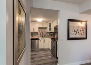 Photo 9: 402 1540 29 Street NW in Calgary: St Andrews Heights Apartment for sale : MLS®# A1141657