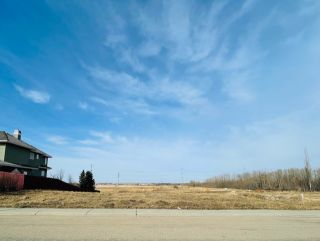 Photo 2: 738 52304 RGE RD 233: Rural Strathcona County Rural Land/Vacant Lot for sale : MLS®# E4236967