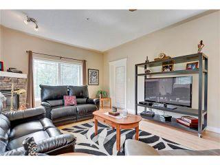 Photo 6: 212 20 DISCOVERY RIDGE Close SW in Calgary: Discovery Ridge Condo for sale : MLS®# C4051617