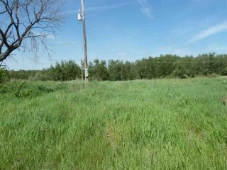 Photo 33: 57525 Rg Rd 214: Rural Sturgeon County Rural Land/Vacant Lot for sale : MLS®# E4266088