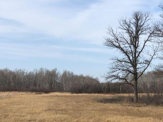 Photo 25: 0 Governor Rd at 94N Road in St Laurent: RM of St Laurent Residential for sale (R19)  : MLS®# 202108065
