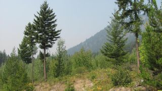 Photo 9: 80 Acres Creighton Valley Road, in Lumby: Vacant Land for sale : MLS®# 10239894