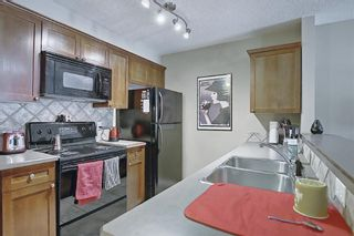 Photo 13: 306 420 3 Avenue NE in Calgary: Crescent Heights Apartment for sale : MLS®# A1105817