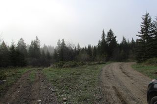 Photo 9: 1/4 2700 Block Squilax Anglemont Road in Lee Creek: North Shuswap Land Only for sale (Shuswap)  : MLS®# 10138544