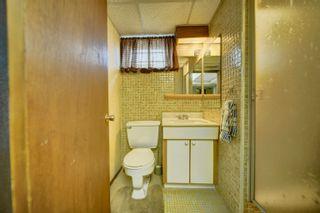 Photo 43: 16038 94A Avenue in Edmonton: Zone 22 House for sale : MLS®# E4266489