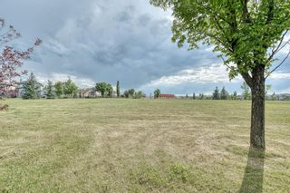 Photo 45: 59 CRANWELL Close SE in Calgary: Cranston Detached for sale : MLS®# A1019826