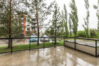 Photo 46:  in Edmonton: Zone 56 Condo for sale : MLS®# E4260150