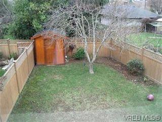 Photo 13: 2520 Cedar Hill Rd in VICTORIA: Vi Oaklands Half Duplex for sale (Victoria)  : MLS®# 557755