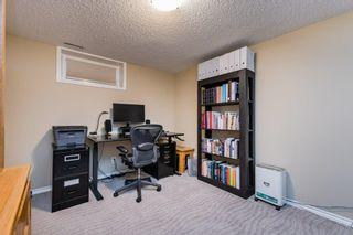 Photo 34: 3604 111A Street in Edmonton: Zone 16 House for sale : MLS®# E4255445