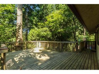 Photo 16: 1349 TERRACE Avenue in North Vancouver: Capilano NV House for sale : MLS®# R2092502