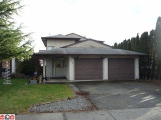 Photo 1: 2473 WAYBURNE Crescent in Langley: Willoughby Heights Home for sale ()  : MLS®# F1029034