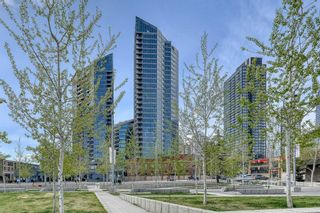 Photo 3: 2907 225 11 Avenue SE in Calgary: Beltline Apartment for sale : MLS®# A1109054