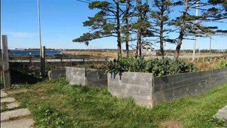 Photo 31: 179 Hawk Point Road in Clark's Harbour: 407-Shelburne County Residential for sale (South Shore)