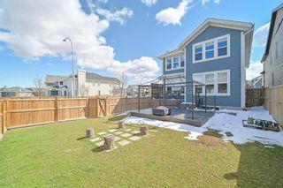 Photo 28: 4 Mahogany Mount SE in Calgary: Mahogany Detached for sale : MLS®# A1098033