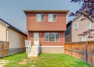 Photo 39: 122 Auburn Bay Heights SE in Calgary: Auburn Bay Detached for sale : MLS®# A1130406