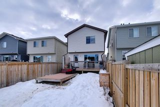 Photo 49: 134 Auburn Crest Way SE in Calgary: Auburn Bay Detached for sale : MLS®# A1061710