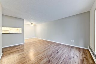 Photo 13: 103 11 Dover Point SE in Calgary: Dover Apartment for sale : MLS®# A1083330
