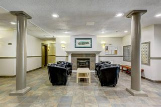Photo 21: 4P 525 56 Avenue SW in Calgary: Windsor Park Apartment for sale : MLS®# A1123040