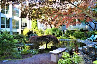 Photo 27: 202 1230 HARO STREET in Vancouver: West End VW Condo for sale (Vancouver West)  : MLS®# R2463124