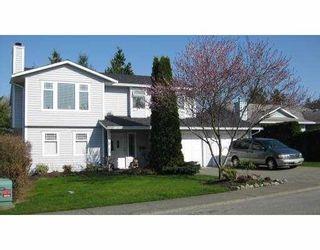 "Photo 1: 12530 223RD Street in Maple_Ridge: West Central House for sale in ""DAVISON SUBDIVISION"" (Maple Ridge)  : MLS®# V762229"