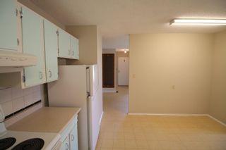 Photo 26: 105 Hawthorne Crescent: Wetaskiwin House for sale : MLS®# E4260442