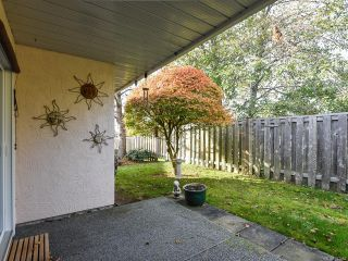 Photo 15: 3 2030 Robb Ave in COMOX: CV Comox (Town of) Row/Townhouse for sale (Comox Valley)  : MLS®# 831085