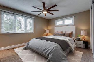 Photo 19: 82 FAIRWAY Drive in Edmonton: Zone 16 House for sale : MLS®# E4266254