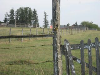 Photo 4: 1 Minto Street: Granum Residential Land for sale : MLS®# A1137436