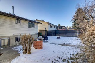 Photo 41: 6135 TOUCHWOOD Drive NW in Calgary: Thorncliffe Detached for sale : MLS®# C4291668