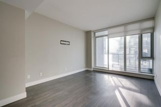 Photo 16: 905 1122 3 Street SE in Calgary: Beltline Apartment for sale : MLS®# A1050629