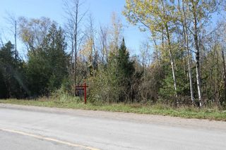 Photo 4: Lt 48 Centennial Park Road in Kawartha Lakes: Rural Eldon Property for sale : MLS®# X5380435