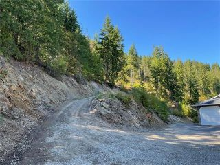 Photo 44: 430 Old Spallumcheen Road, in Sicamous: House for sale : MLS®# 10240089