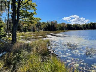 Photo 8: 300 HAMILTON LAKE Road in South River: Vacant Land for sale : MLS®# 40159931