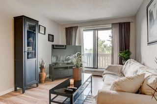Photo 1: 2308 3115 51 Street SW in Calgary: Glenbrook Apartment for sale : MLS®# A1024636