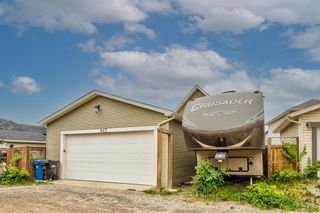 Photo 45: 467 Cranberry Circle SE in Calgary: Cranston Detached for sale : MLS®# A1132288