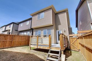 Photo 43: 55 Nolanfield Terrace NW in Calgary: Nolan Hill Detached for sale : MLS®# A1094536