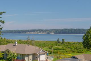 Photo 65: 7004 Island View Pl in : CS Island View House for sale (Central Saanich)  : MLS®# 878226