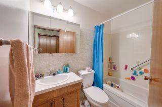 Photo 21: 9943 9939 77 Street in Edmonton: Zone 19 House Fourplex for sale : MLS®# E4225000