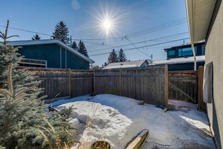 Photo 45: 2423 28 Avenue SW in Calgary: Richmond Detached for sale : MLS®# A1079236