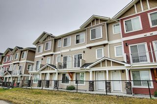 Photo 35: 63 Redstone Circle NE in Calgary: Redstone Row/Townhouse for sale : MLS®# A1141777