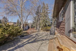 Photo 45: 87 Bermuda Close NW in Calgary: Beddington Heights Detached for sale : MLS®# A1073222