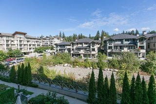 """Photo 17: 408 3600 WINDCREST Drive in North Vancouver: Roche Point Condo for sale in """"WINDSONG AT RAVENWOODS"""" : MLS®# V969491"""