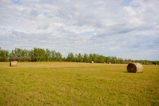 """Photo 2: 265A N BERGEN Road in Fort St. John: Fort St. John - Rural E 100th Land for sale in """"ROSE PRAIRIE"""" (Fort St. John (Zone 60))  : MLS®# R2406137"""