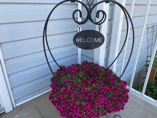 Photo 50: 4318 53A Street: Wetaskiwin House for sale : MLS®# E4253629