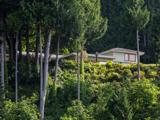 Photo 57: 7502 Lantzville Rd in : Na Lower Lantzville House for sale (Nanaimo)  : MLS®# 878271