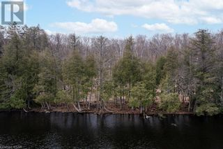Photo 4: 3497 BRUNEL Road in Lake Of Bays: Vacant Land for sale : MLS®# 40161975